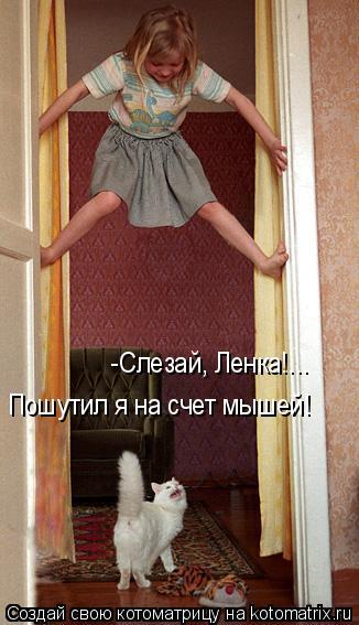 Котоматрица: -Слезай, Ленка!...  Пошутил я на счет мышей!