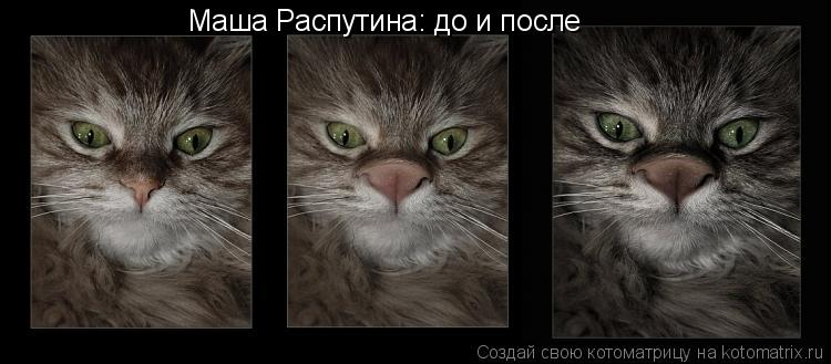 Котоматрица: Маша Распутина: до и после