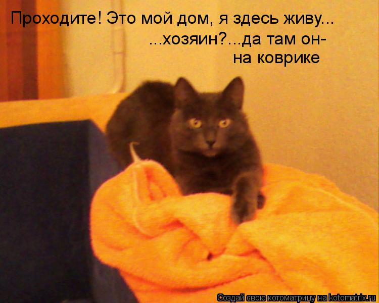 Котоматрица: Проходите! Это мой дом, я здесь живу... ...хозяин?...да там он- на коврике