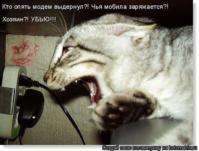 Котоматрица: Кто опять модем выдернул?! Чья мобила заряжается?! Хозяин?! УБЬЮ!!!