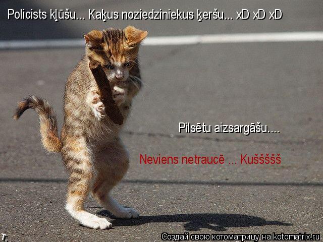 Котоматрица: Policists kļūšu... Kaķus noziedziniekus ķeršu... xD xD xD Pilsētu aizsargāšu.... Neviens netraucē ..