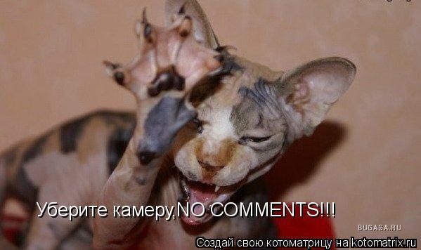 Котоматрица: Уберите камеру,NO COMMENTS!!!