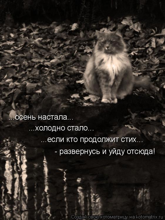 Котоматрица: ...осень настала... ...холодно стало... ...если кто продолжит стих... - развернусь и уйду отсюда!