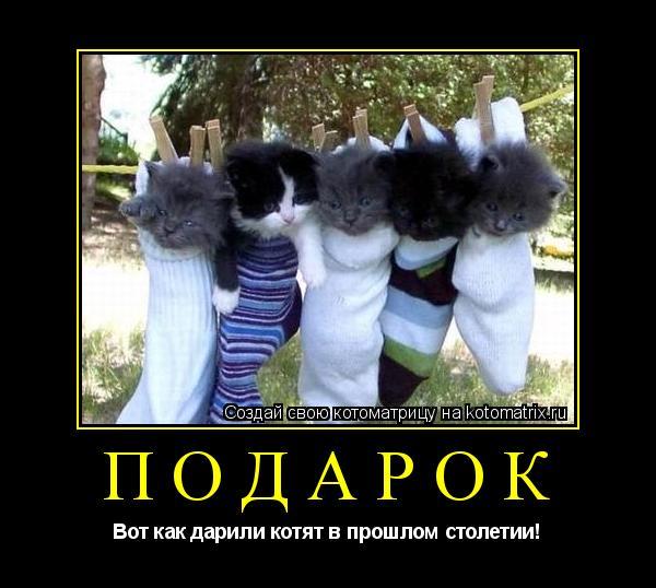 Котоматрица: Подарок Вот как дарили котят в прошлом столетии!