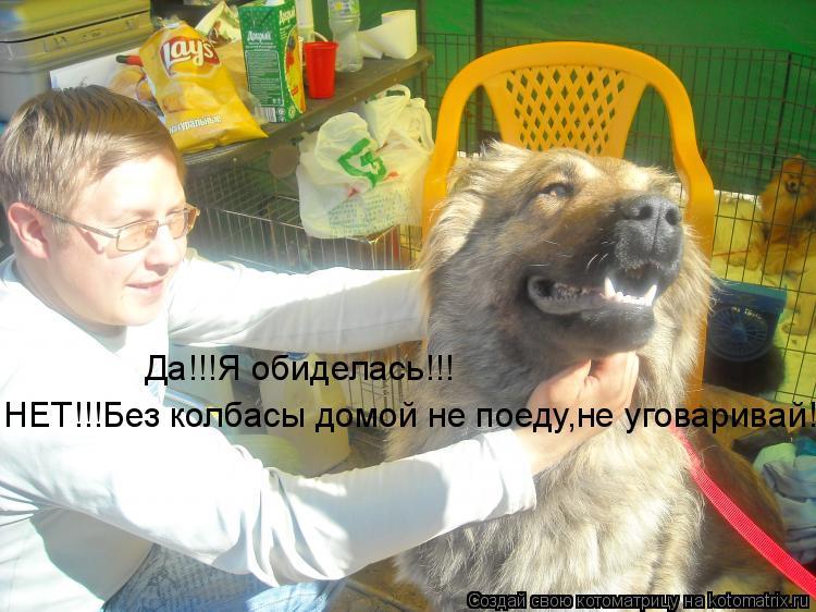 Котоматрица: Да!!!Я обиделась!!! НЕТ!!!Без колбасы домой не поеду,не уговаривай!!!!
