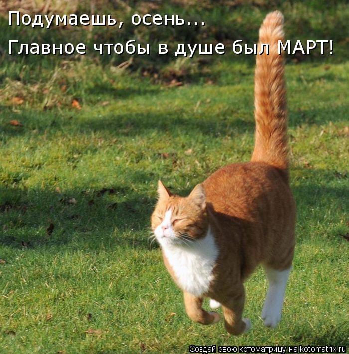 http://kotomatrix.ru/images/lolz/2009/11/10/400744.jpg