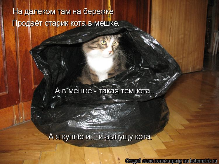 Котоматрица: На далёком там на бережке Продаёт старик кота в мешке. А в мешке - такая темнота... А я куплю и.., и выпущу кота.