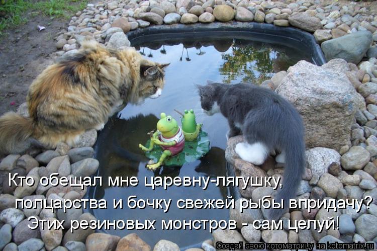 Котоматрица: Кто обещал мне царевну-лягушку, полцарства и бочку свежей рыбы впридачу? Этих резиновых монстров - сам целуй!