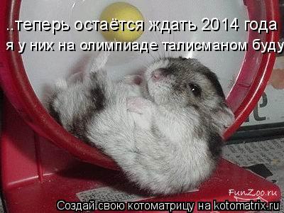 Котоматрица: ..теперь остаётся ждать 2014 года я у них на олимпиаде талисманом буду