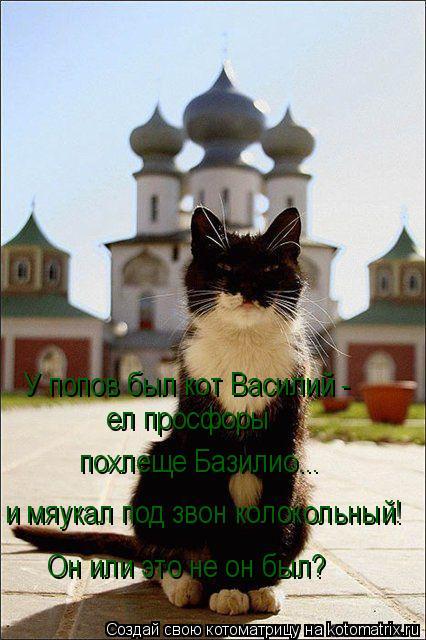 Котоматрица: У попов был кот Василий - ел просфоры  похлеще Базилио... и мяукал под звон колокольный! Он или это не он был?