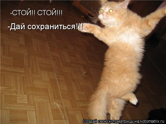 Котоматрица: -СТОЙ!! СТОЙ!!! -Дай сохраниться!!!