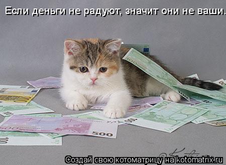 Котоматрица: Если деньги не радуют, значит они не ваши.