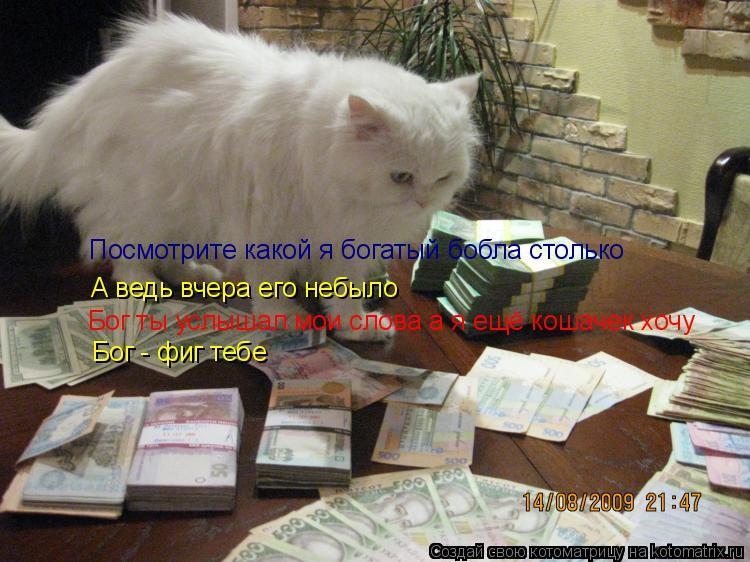 Котоматрица: Посмотрите какой я богатый бобла столько А ведь вчера его небыло Бог ты услышал мои слова а я ещё кошачек хочу Бог - фиг тебе