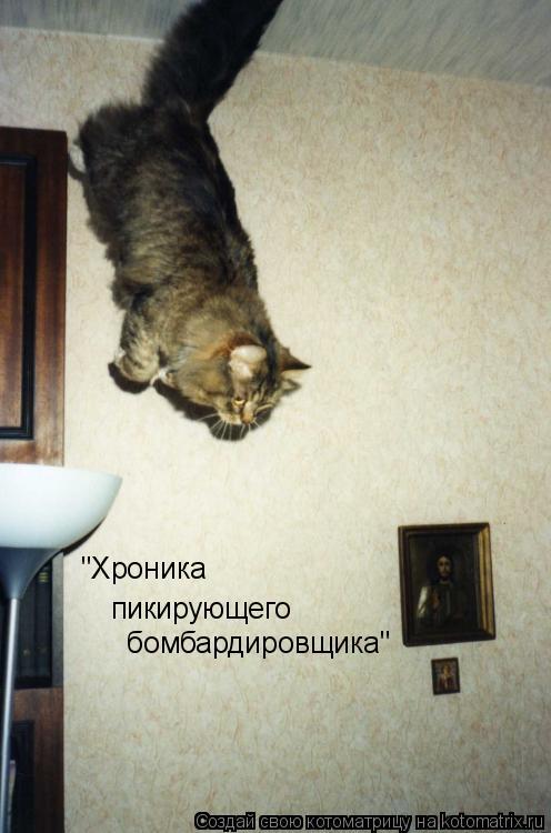 "Котоматрица: ""Хроника пикирующего бомбардировщика"""