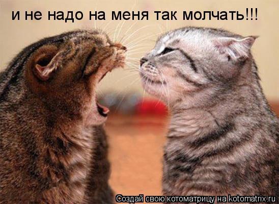 Котоматрица: и не надо на меня так молчать!!!