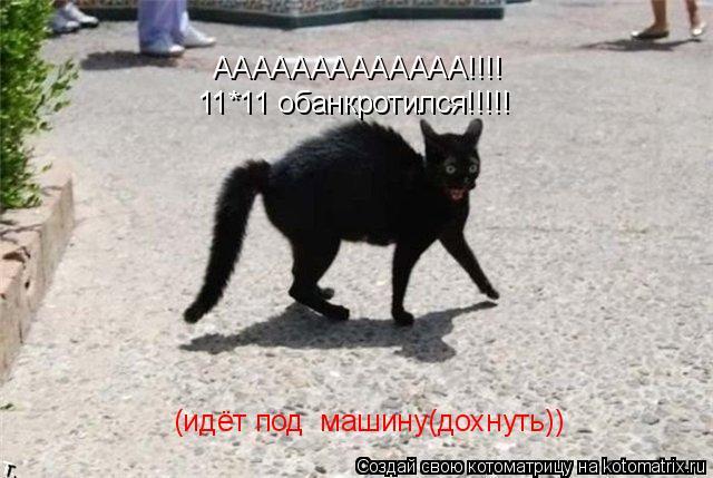 Котоматрица: ААААААААААААА!!!! 11*11 обанкротился!!!!! (идёт под  машину(дохнуть))