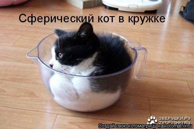 Котоматрица: Сферический кот в кружке