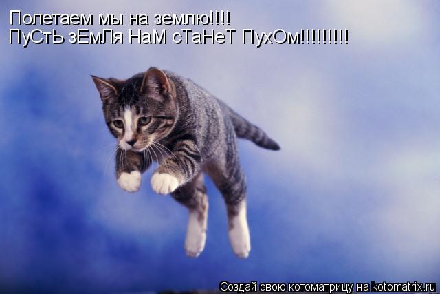 Котоматрица: Полетаем мы на землю!!!! ПуСтЬ зЕмЛя НаМ сТаНеТ ПухОм!!!!!!!!!
