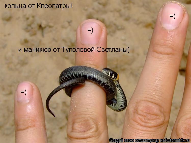 Котоматрица: =) =) =) кольца от Клеопатры! и маникюр от Туполевой Светланы)