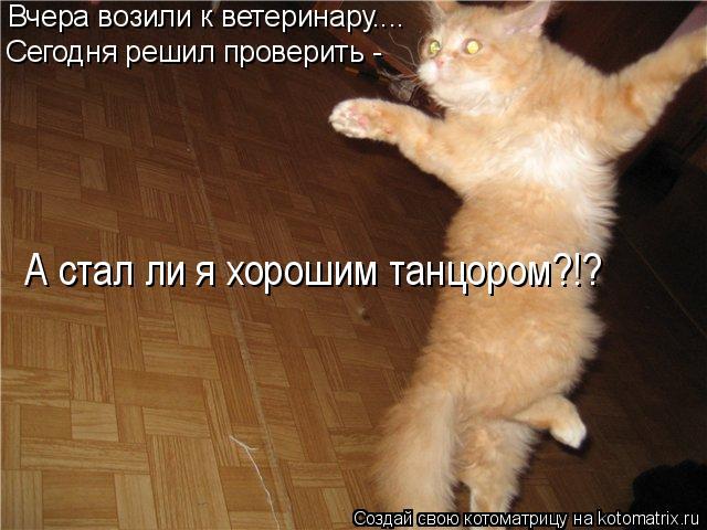Котоматрица: Вчера возили к ветеринару.... Сегодня решил проверить -  А стал ли я хорошим танцором?!?