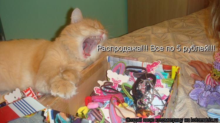 Котоматрица: Распродажа!!! Все по 5 рублей!!!