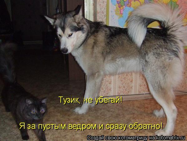 Котоматрица: Тузик, не убегай!  Я за пустым ведром и сразу обратно!