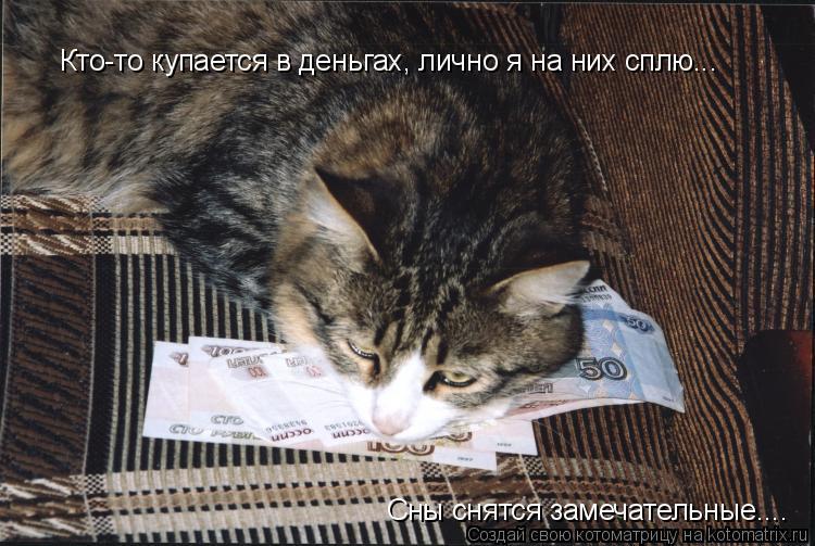 Котоматрица: Кто-то купается в деньгах, лично я на них сплю...  Сны снятся замечательные....
