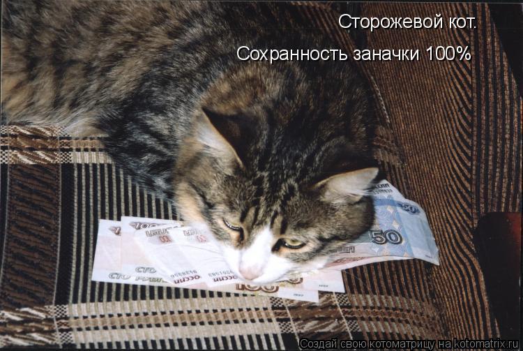 Котоматрица: Сторожевой кот. Сохранность заначки 100%