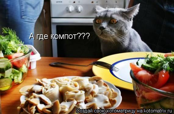 Котоматрица: А где компот???