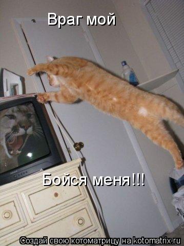 Котоматрица: Враг мой Бойся меня!!!