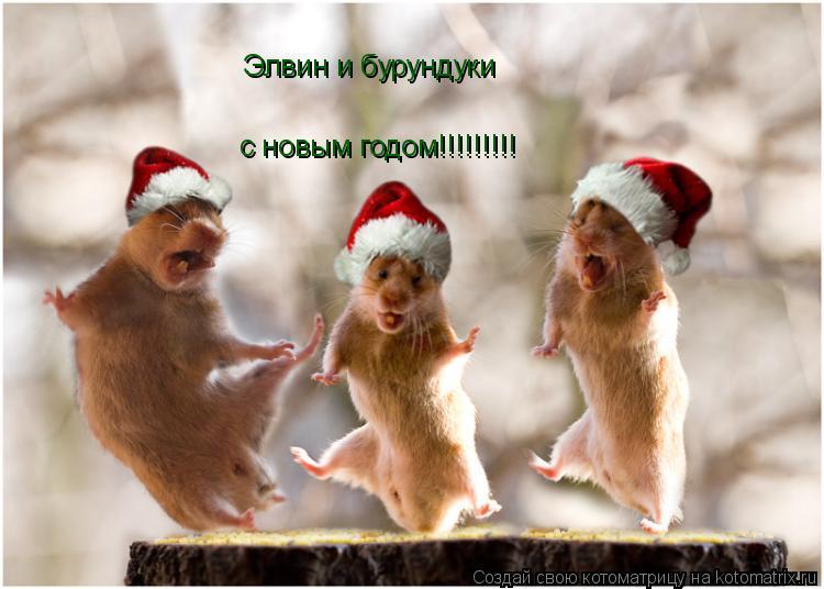 Котоматрица: Элвин и бурундуки с новым годом!!!!!!!!!