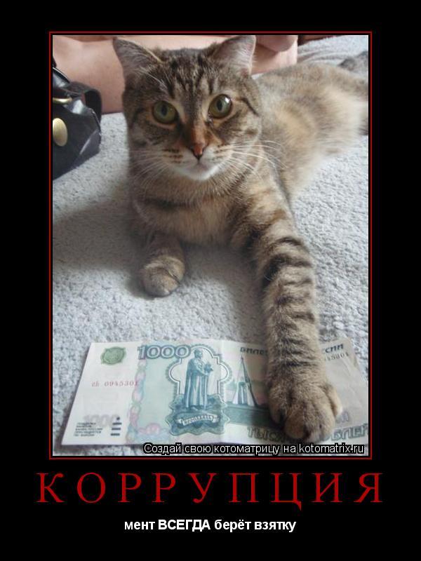 Котоматрица: коррупция мент ВСЕГДА берёт взятку