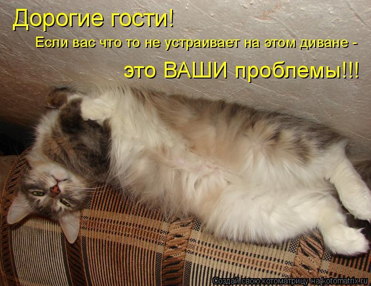 Котоматрица: Дорогие гости! Если вас что то не устраивает на этом диване - это ВАШИ проблемы!!!