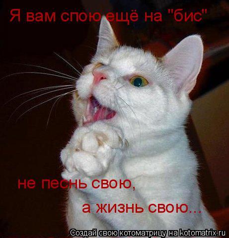 """Котоматрица: Я вам спою ещё на """"бис"""" не песнь свою, а жизнь свою..."""