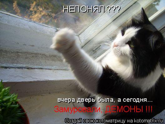 Котоматрица: НЕПОНЯЛ ??? вчера дверь была, а сегодня...  Замуровали, ДЕМОНЫ !!!