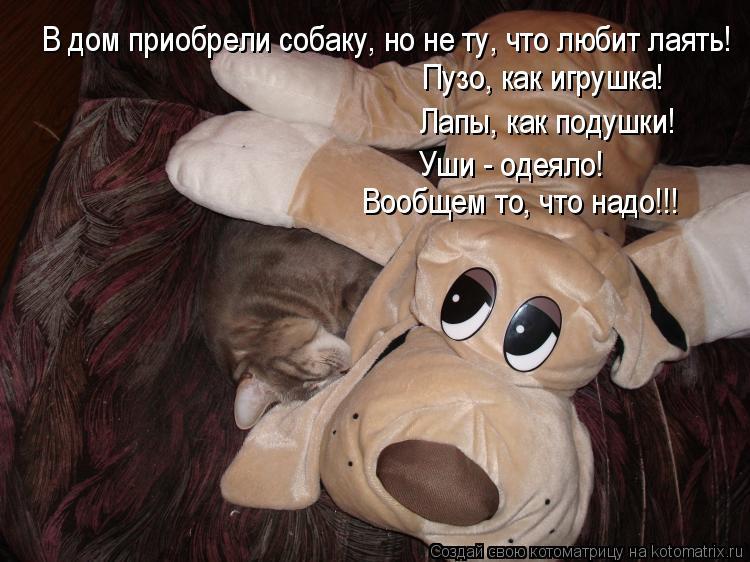 Котоматрица: В дом приобрели собаку, но не ту, что любит лаять! Пузо, как игрушка! Лапы, как подушки! Уши - одеяло! Вообщем то, что надо!!!