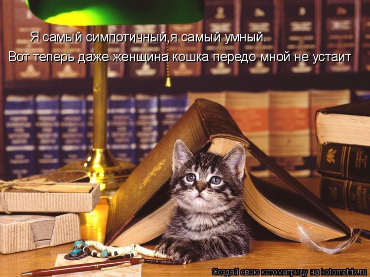 Котоматрица: Я самый симпотичный,я самый умный. Вот теперь даже женщина кошка передо мной не устаит