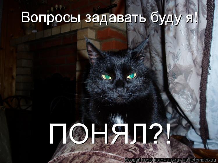 Котоматрица: Вопросы задавать буду я! ПОНЯЛ?!