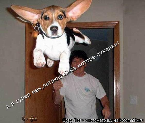 Котоматрица: А я супер мен,летающий на моторе пукалки!