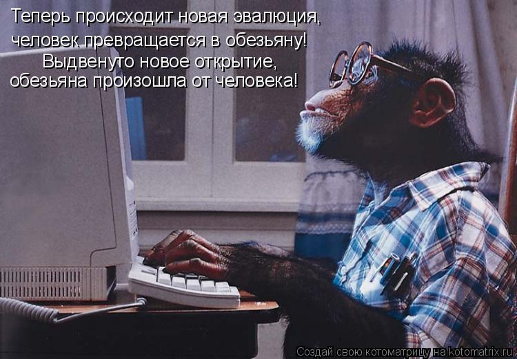 Котоматрица: Теперь происходит новая эвалюция, человек превращается в обезьяну! Выдвенуто новое открытие, обезьяна произошла от человека!
