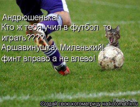 Котоматрица: Андрюшенька! Кто ж тебя учил в футбол  то  играть???? Аршавинушка..Миленький! финт вправо а не влево!