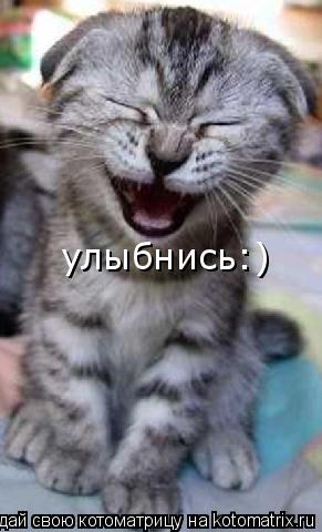 Котоматрица: улыбнись:)