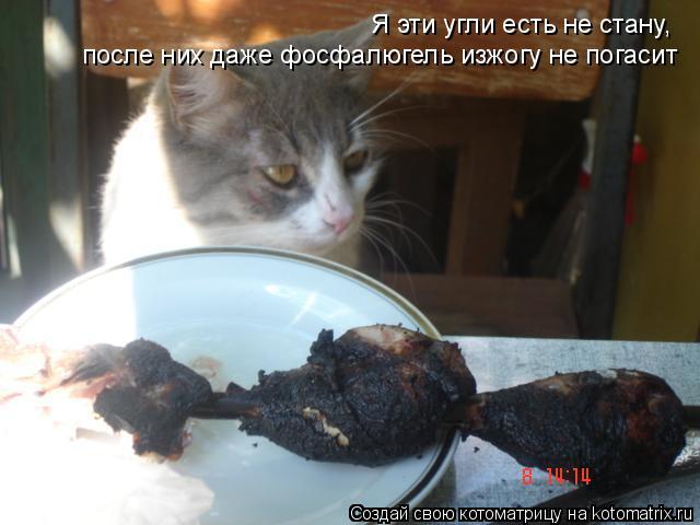 Котоматрица: Я эти угли есть не стану, после них даже фосфалюгель изжогу не погасит