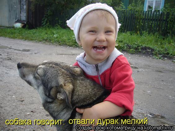 Котоматрица: собака говорит: отвали дурак мелкий