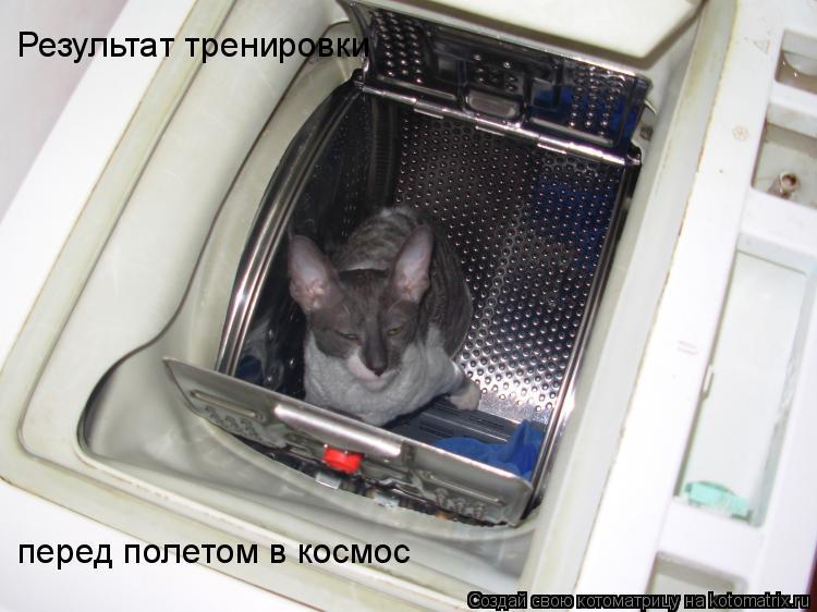Котоматрица: Результат тренировки  перед полетом в космос