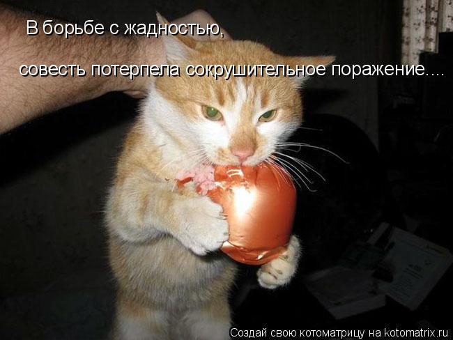 Котоматрица: В борьбе с жадностью, совесть потерпела сокрушительное поражение....