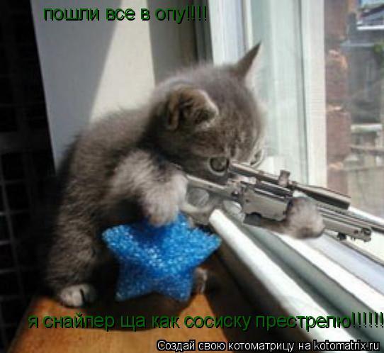 Котоматрица: пошли все в опу!!!! я снайпер ща как сосиску престрелю !!!!!!