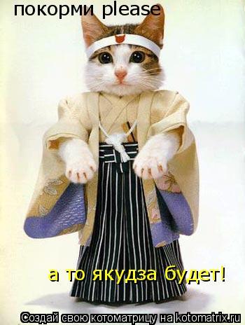 Котоматрица: покорми please а то якудза будет!