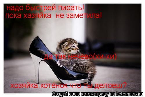 Котоматрица: надо быстрей писать! пока хазяйка  не заметила! хозяйка:котёнок что ты делоеш? да так нечево(хи-хи)