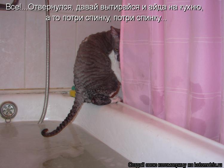 Котоматрица: Все!...Отвернулся, давай вытирайся и айда на кухню, а то потри спинку, потри спинку...